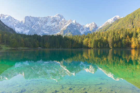 Wonderful lake between forest and mountains