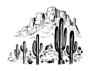 Sketch of the desert of America