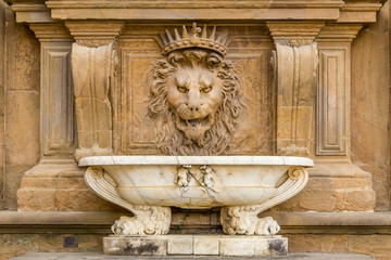 Close up lion stucco at Palazzo Pitti, the old palace of Medici family in Florence