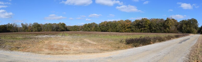 Harvested cotton field along a road in Marshall County Mississippi