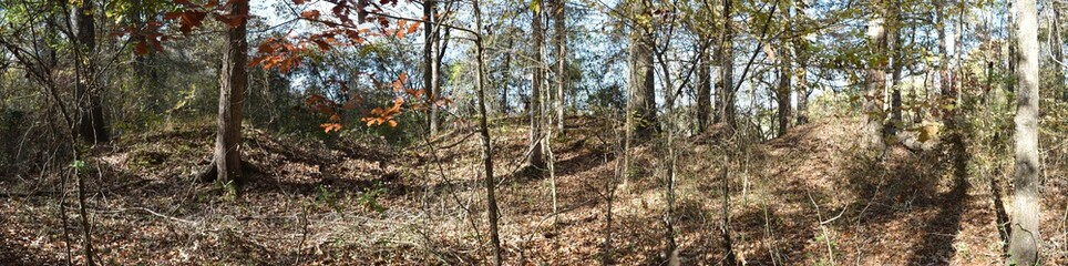 Civil War Earthworks at Tallahatchie Crossing in Mississippi