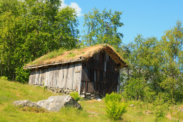 Old wooden barn with grass on the roof in Norway