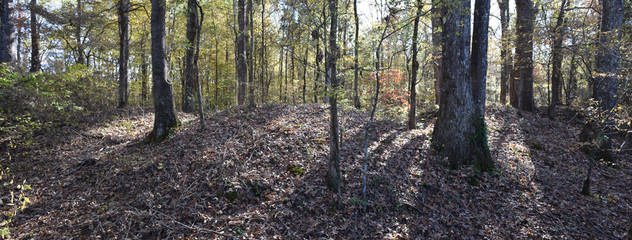 Mounds of the Civil War Earthworks at Tallahatchie Crossing in Mississippi