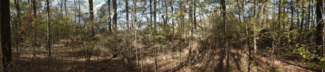 Historic site Civil War Earthworks at Tallahatchie Crossing in Mississippi
