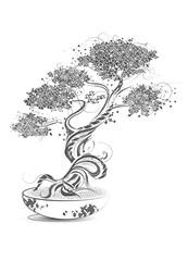 gezeichneter Bonsai Baum auf weißem Grund