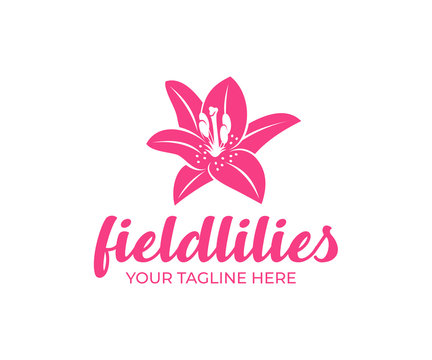 Field lily, flower, fashion, spa and beauty salon, logo design. Nature, plant, bloom and flora, vector design and illustration