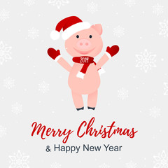 Vector Illustration. Cartoon happy pig. Merry Christmas and Happy New Year poster. 2019. Smilling piggy in Santa Claus's hat and scarf