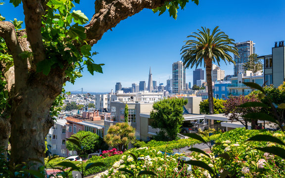 Downtown San Francisco with the Transamerica Pyramid from Lombard Street, San Francisco, California