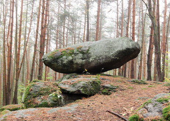 Rocking stone in the forest