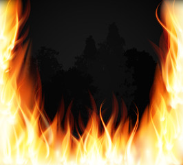 Trees on fire. Fire. Burning Fire Special Light Effect Flames. Vector Illustration