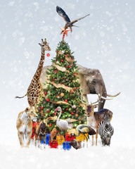 Wall Mural - Zoo Animals Decorating Christmas Tree in Snow
