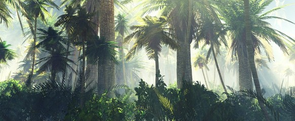 Naklejka premium Dżungla we mgle rano, palmy w mgle, renderowania 3d