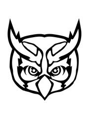 vogel kontur gesicht kopf eule tattoo uhu cool design raubvogel nacht schön clipart logo