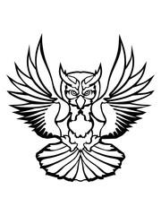tattoo kontur eule uhu fliegen vogel cool design federn raubvogel nacht schön clipart logo