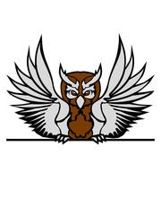 mauer strich schild text schreiben name farbig kontur eule tattoo uhu fliegen vogel cool design federn raubvogel nacht schön clipart logo
