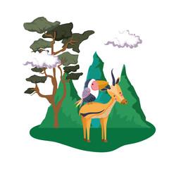 Fotobehang Kasteel cute bird toucan with deer in the landscape