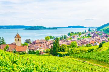 Keuken foto achterwand Lime groen Twann-Tüscherz village situated on Bielersee near Biel/Bienne in Switzerland