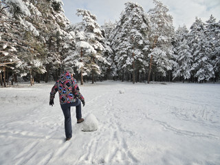 A girl in a snowy forest rolls a snowman. Frosty morning and fresh air in the pine forest.