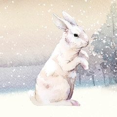 Wall Mural - Wild white rabbit in a winter wonderland painted by watercolor vector