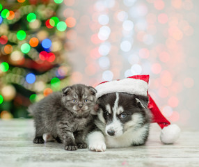 Husky puppy in red santa hat lying with tiny kitten on a background of the Christmas tree