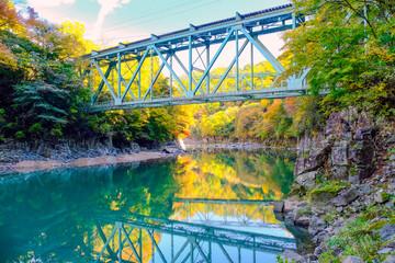 紅葉の利根川と鉄橋
