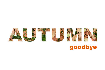 Phrase in capital letters of autumn leaves on a poster, autumn farewell