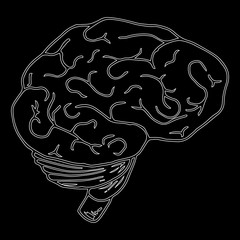 Contour of the brain on a black background. Human brain. Vector illustration.
