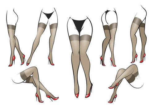 Slender Female legs in stockings set