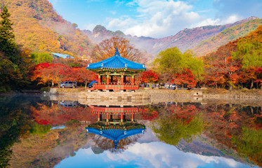 호수 위의 팔각정과 가을 풍경 Wall mural