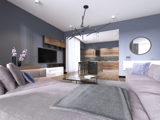 studio apartment living room with fabric sofa and TV storage and kitchen with console on the wall.