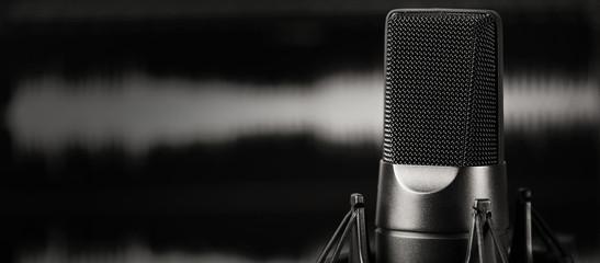 microphone close up. Professional mic