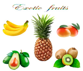 Set of exotic fruits on a white background.