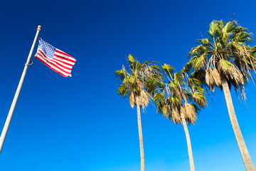 patriotism, independence day and summer holidays concept - american flag and palm trees over blue sky at venice beach, california Wall mural