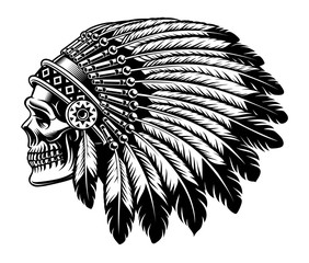 Black and white illustration of an Indian skull.