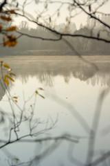 See im Herbstnebel