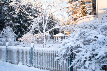Winter view. Newly fallen snow covering fence and branches.