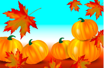 Bright orange pumpkins and falling red maple leaves on a blue autumn background. Seasonal banner or card with copy space for your text. Vector illustration