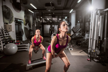 Young Caucasian women exercising in the gym. Healthy lifestyle concept.
