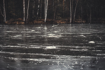 forest lake covered in clear ice