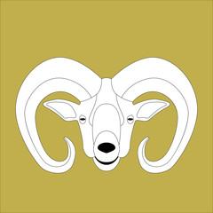 ram head, vector illustration ,  lining draw,