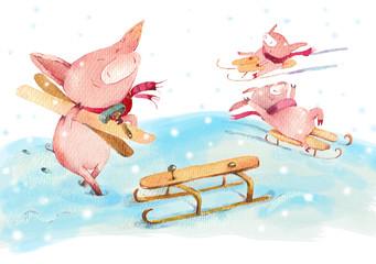 Piggy joy in winter