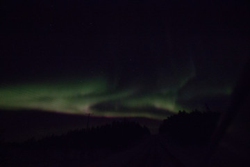 Aurelia borealis/northern lighs in Lappland