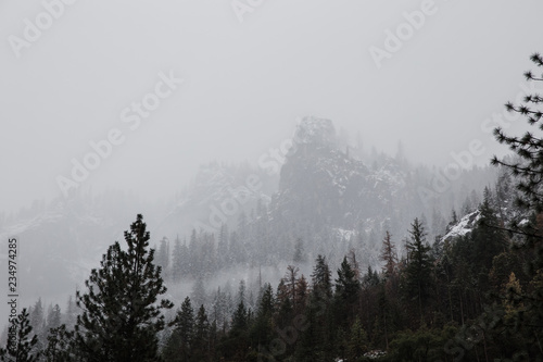 Winter Morning In The Mountains Stock Photo And Royalty Free Images