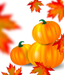 Bright orange pumpkins and blurred falling red maple leaves on white background. Seasonal banner or holiday vintage card. Realistic Vector illustration