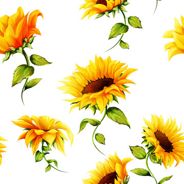 Seamless pattern of sunflowers on white. Hand drawn. Watercolor. Vector - stock