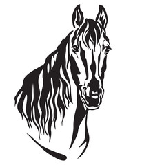 Decorative portrait of horse vector illustration 2