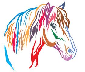 Colorful decorative portrait of horse vector illustration 8