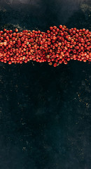 Pattern seamless in horizontal direction, pepper dried red-pink polka dots on a black iron background.