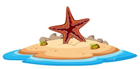 Isolated starfish on island