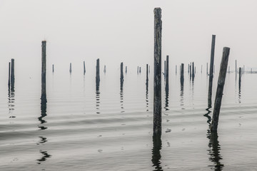 Wooden Poles on the Water 1